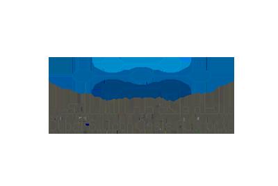 Dubai Silicon Oasis Listed Auditors